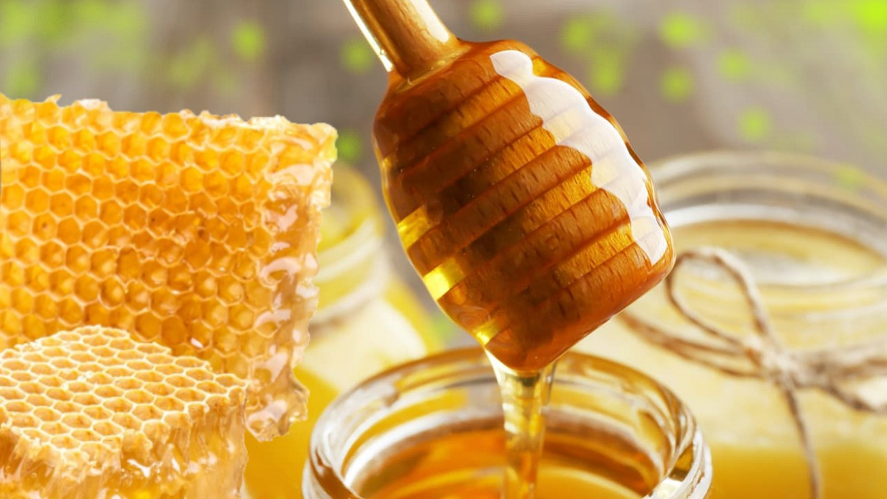 Miel de melis melífera