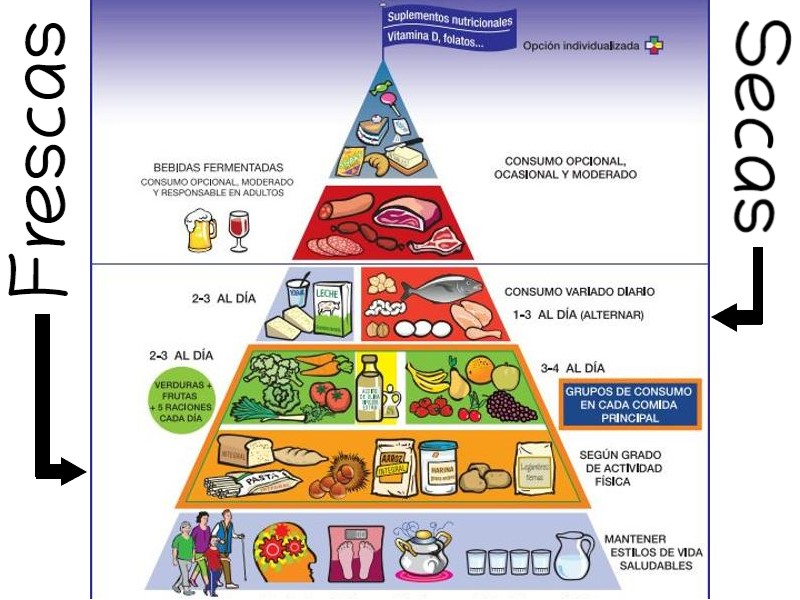Pirámide alimenticia 2020